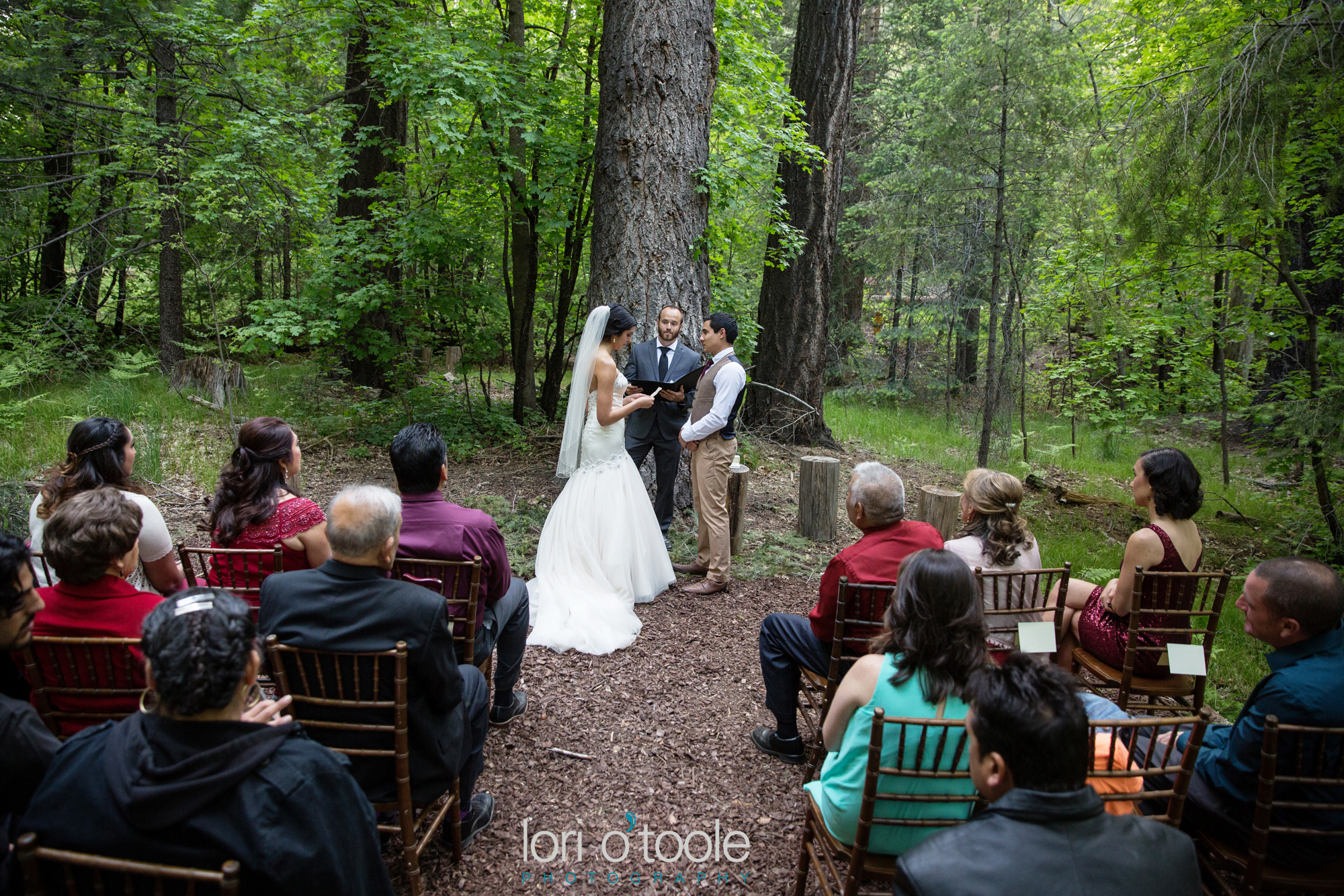 Lisette And Bryan Mt Lemmon Wedding Arizona Mountain